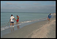 People collecting shells in the morning on the beach at Sanibel Island, Florida