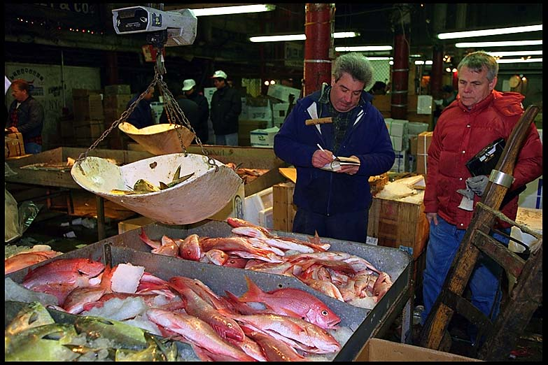 Fulton fish market for Fulton fish market online