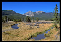 Brown Bowers.  Rocky Mountain National Park, Colorado.
