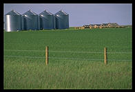 A farm in Alberta, on the way to Calgary from Montana